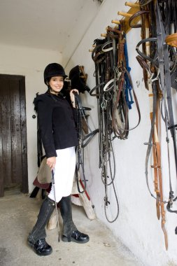 Equestrian in a stable