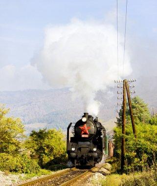Train with steam locomotive near Handlova, Slovakia
