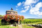 Fotografia vigneti della Côte de beaune vicino pommard, Borgogna, Francia