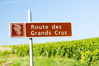 Wine route, Burgundy, France