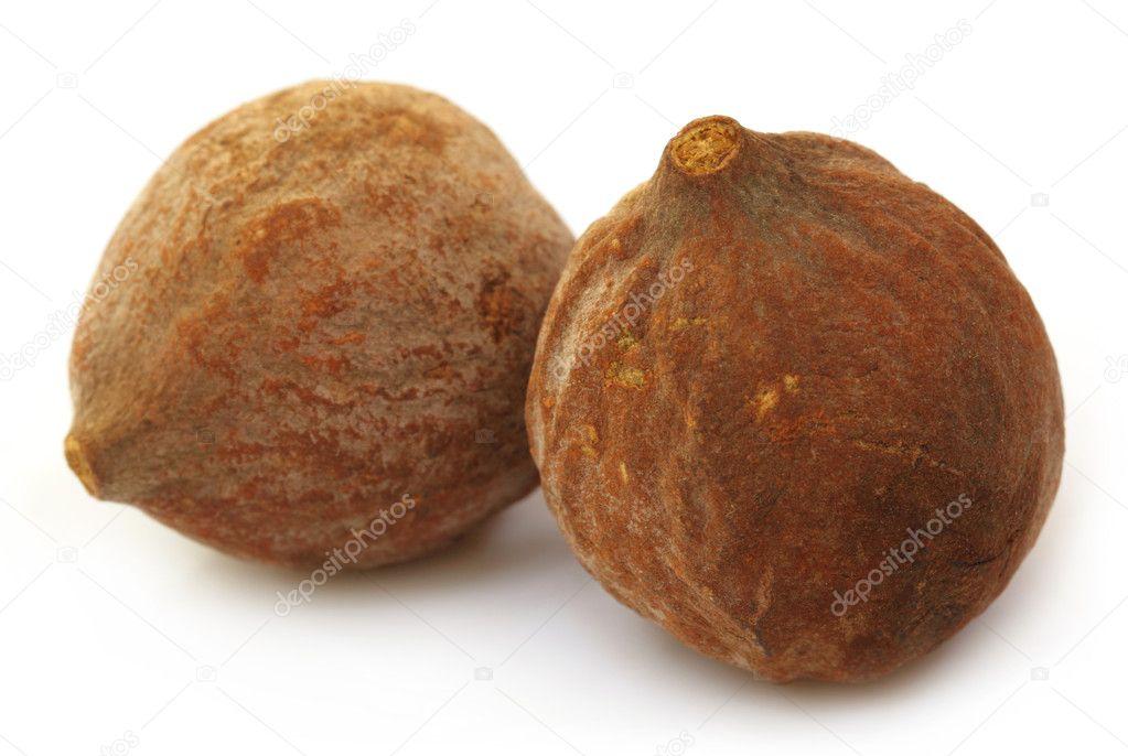 Medicinal Bahera fruits of India