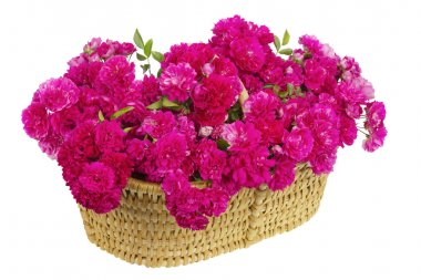Big basket with huge bouquet of pink roses