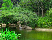 Fotografie Park s rybníkem