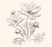 Fotografie Beautiful Flowers Border vector illustration