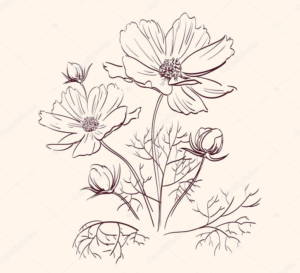 Beautiful Flowers Border vector illustration