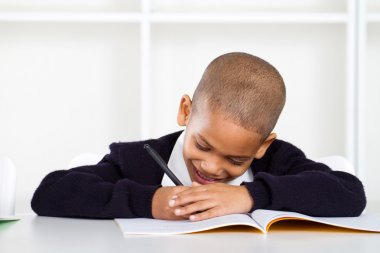 Cute primary schoolboy writing homework