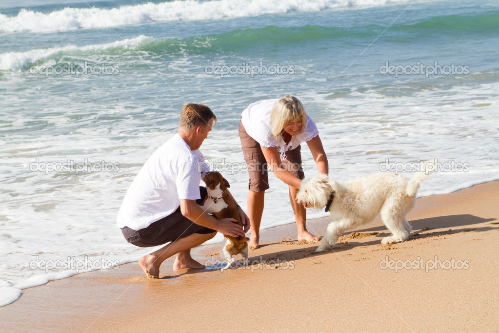 Middle aged couple playing with family dog