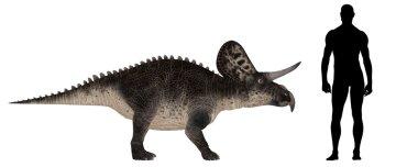 Zuniceratops Size Comparison