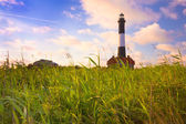 Photo Fire island lighthouse