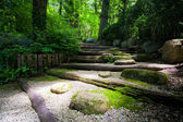 Zen Schritte