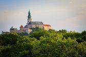 Fotografie Nitranský hrad