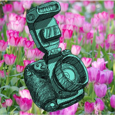 Digital SLR camera sketchs with nice garden background