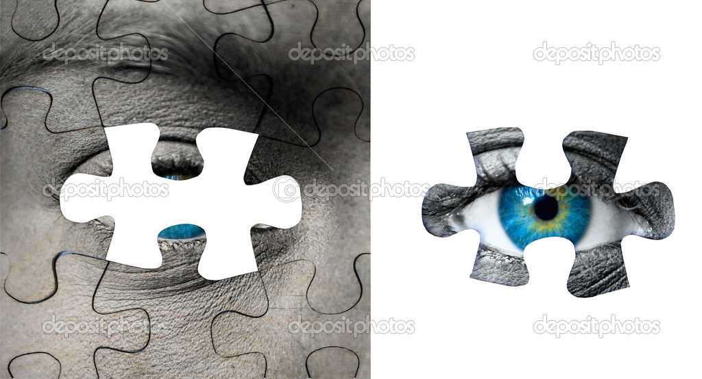Blue Human Eye With Puzzle Pieces Photo By Alexis84