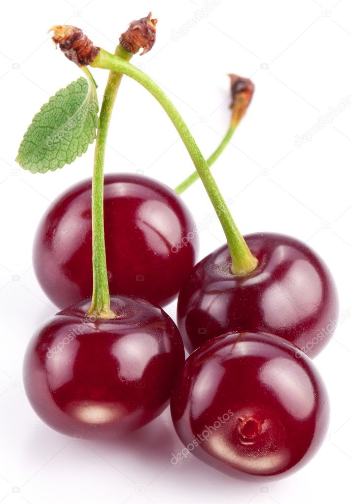 Cherries with leaves on a white background.