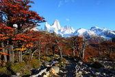 nádherná příroda s mt. fitz roy v los glaciares national park, Patagonie, argentina