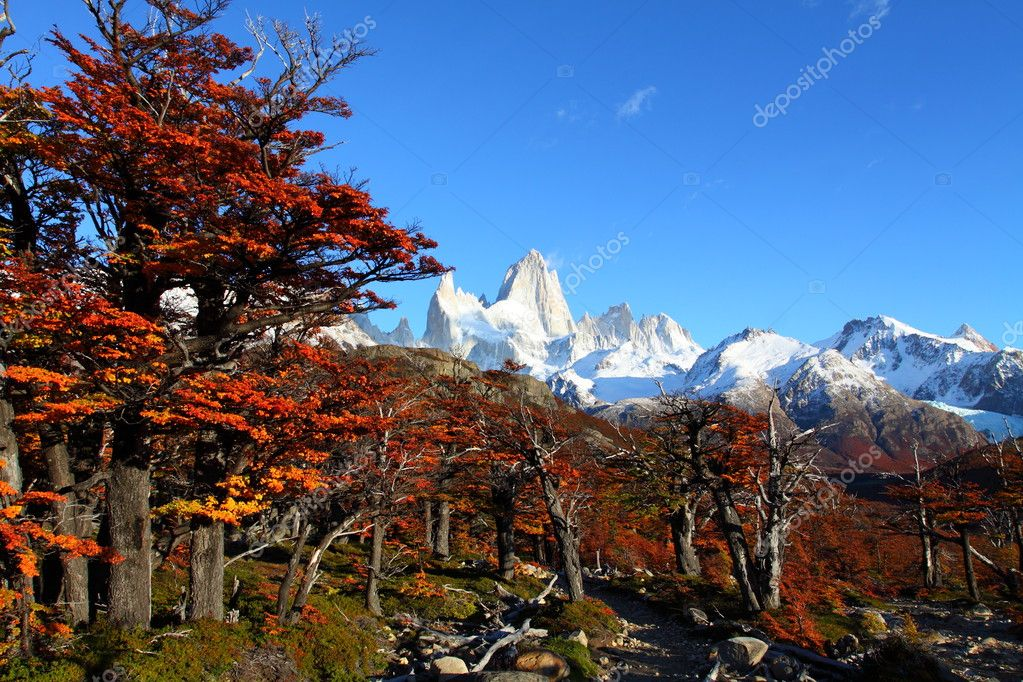 Beautiful nature landscape with Mt. Fitz Roy as seen in Los Glaciares National Park, Patagonia, Argentina