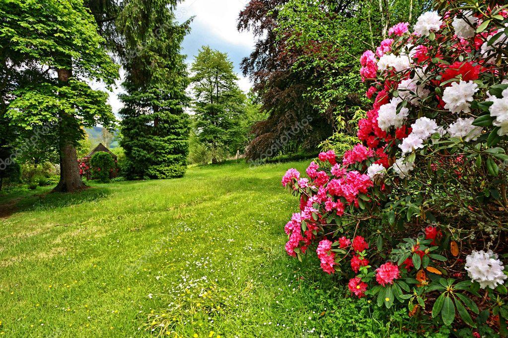 Beautiful, English garden in springtime