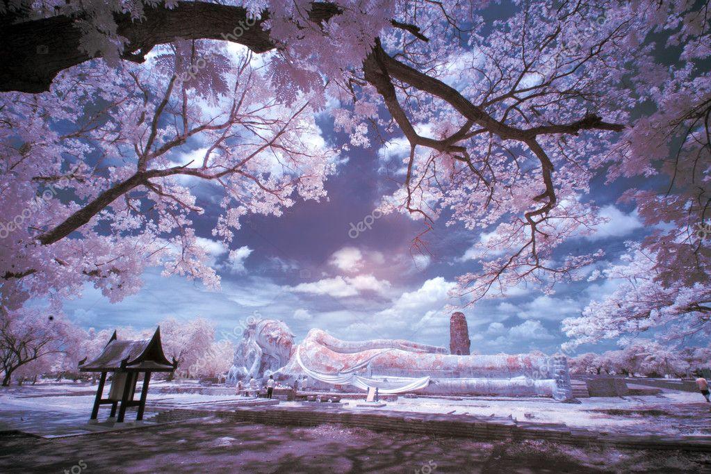 Infrared landscape