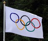 Olimpiai zászlót lengetve