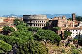 Colosseum, Řím - Itálie