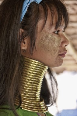 Thailand, Chiang Mai, Karen Long Neck hill tribe village (Baan Tong Lhoung), Long Neck woman in traditional costumes. Women put brass rings on their neck when they are 5 or 6 years old and increase th