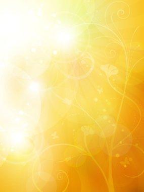 Soft golden, sunny summer or autumn bokeh background