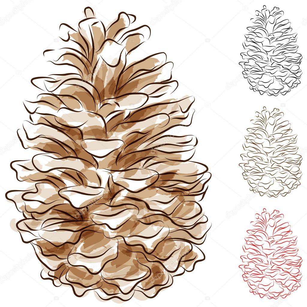 Watercolor Pine Cone