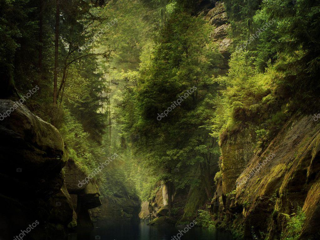 River through the rocks