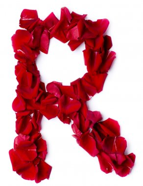 Alphabet R made from red rose