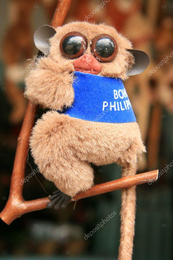 Pictures: tarsier baby | Bush Baby - Tarsier, Philippines ...