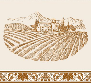 Vintage wine label background with sketch of old chateau, landscape with village and vineyard, grapes floral ornament for decoration and design