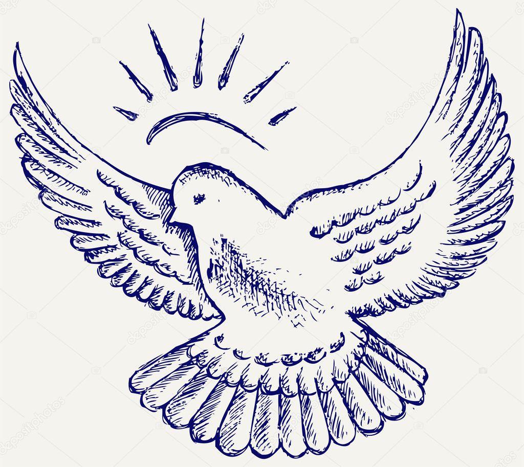 Vecteurs Pour Dessin Colombe Illustrations Libres De Droits