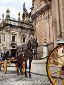 Fotografie Detail der Kathedrale von Sevilla mit Kutsche Pferd, Andalusien, spa