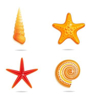 Tropical sea symbols set on the white