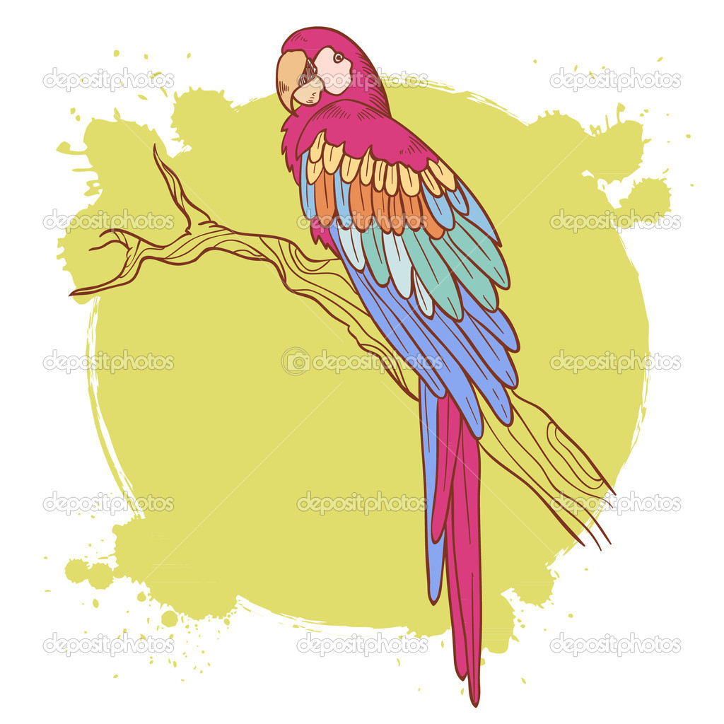 Colorful hand drawn ara parrot sitting on a tree brunch isolated