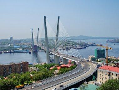Guyed bridge in the Vladivostok over the Golden Horn bay
