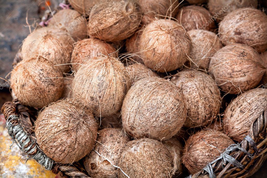 Coconuts at Indian market