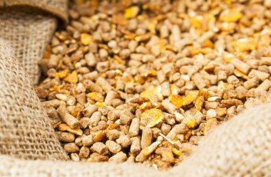 Compound Feed in sacks fodder
