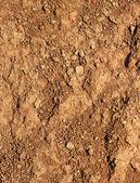 Fotografie suché zemědělské hnědé půdy