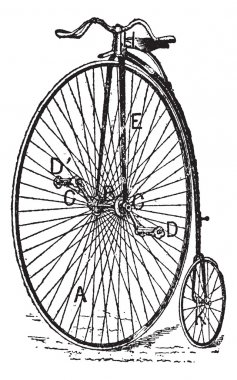 Velocipede, ordinary bicycle, vintage engraving.