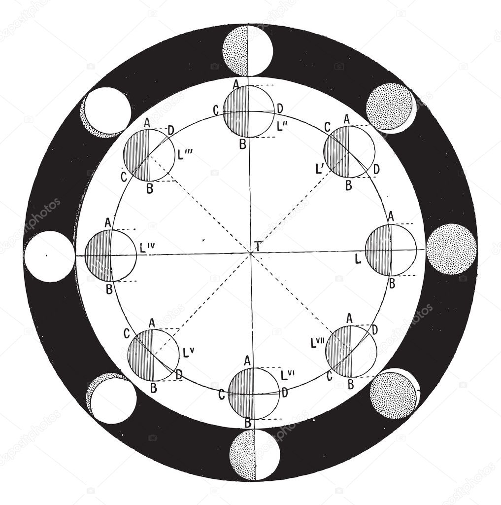 Moon Calendar Illustration : Phases of the moon or lunar phase vintage engraving