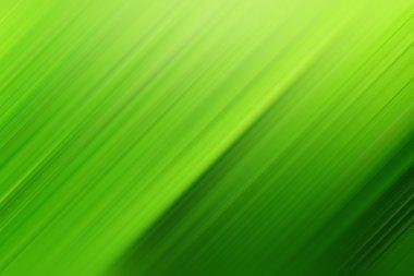 Texture of dark green leaf