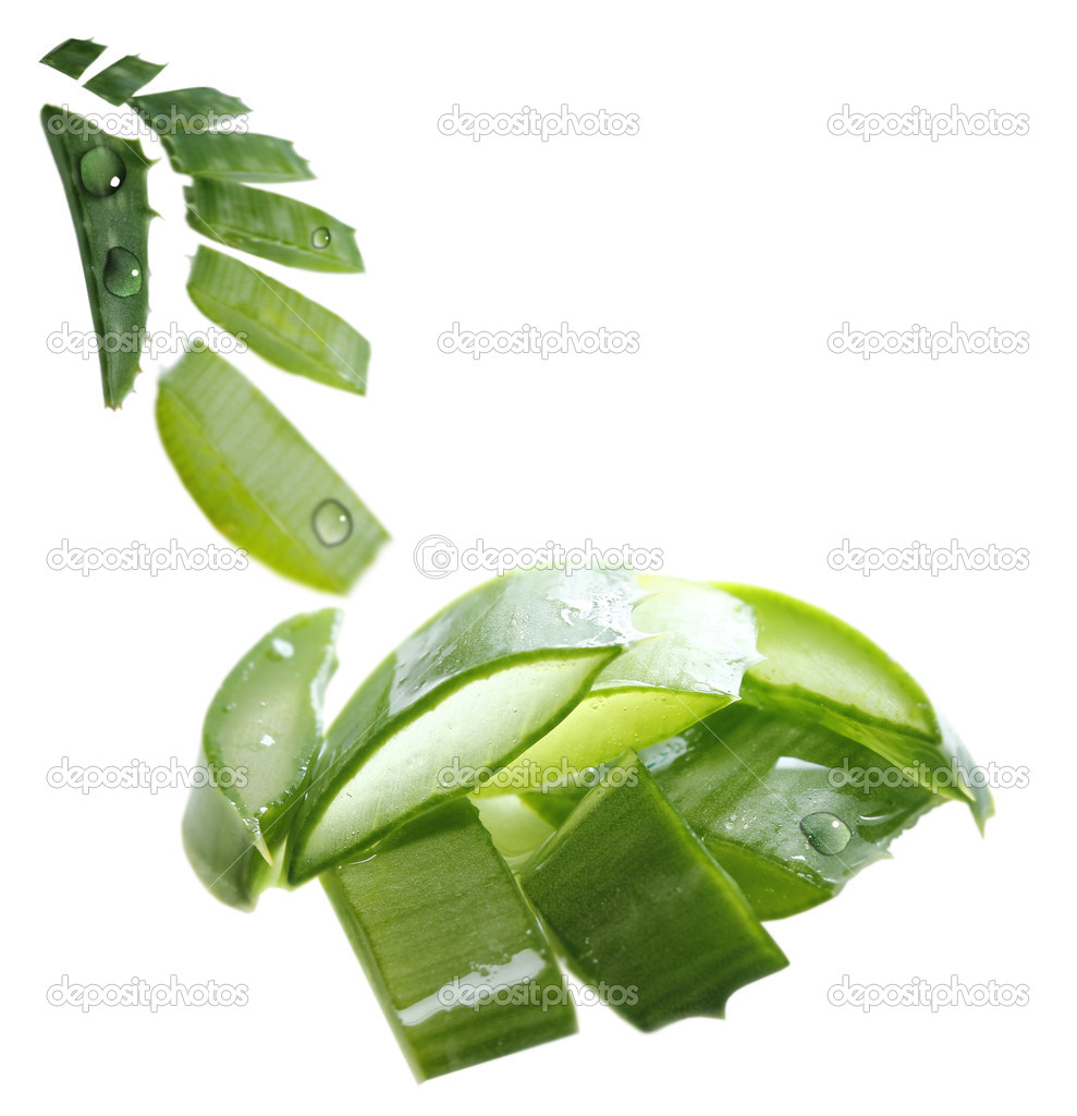 Background with aloe vera isolated on white