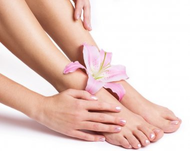 Beautiful female legs and hands with flower