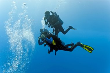 Divers in the blue sea