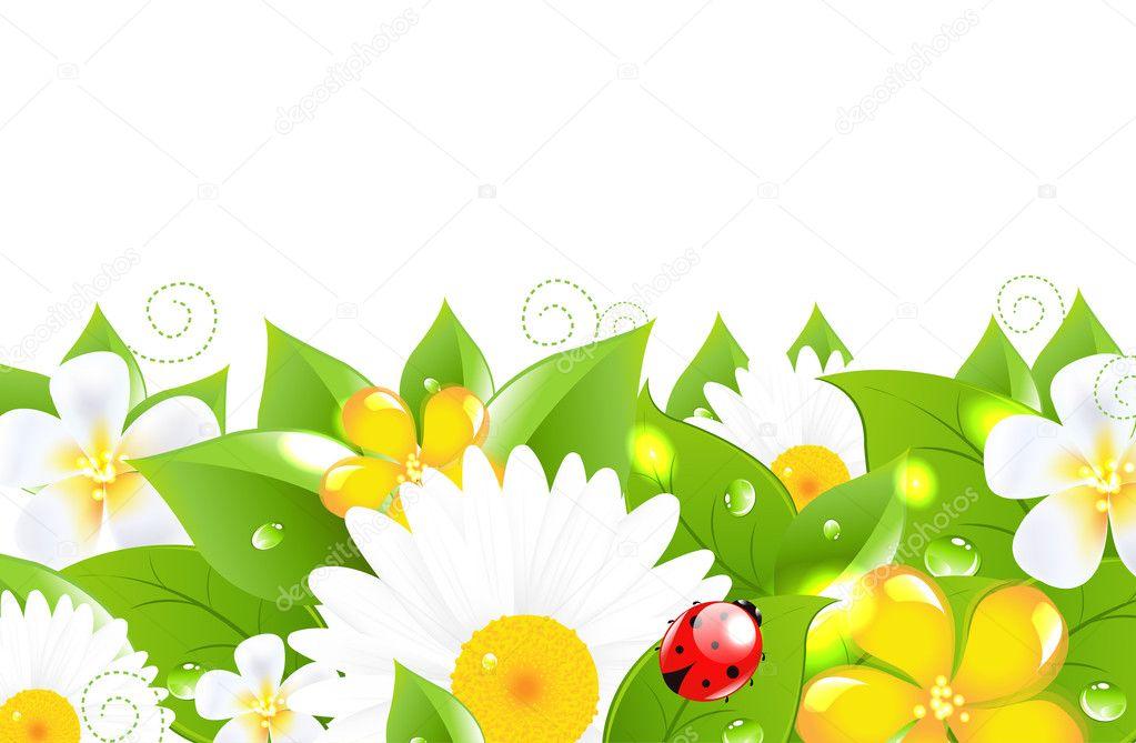 Flower Border With Ladybug