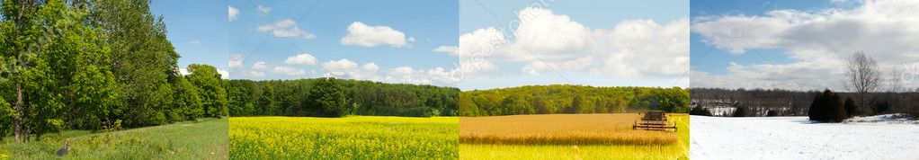 One field, four seasons, wide angle.