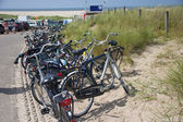 Parking of bicycles near the beach