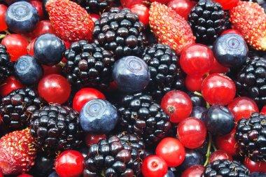 Different fresh berries