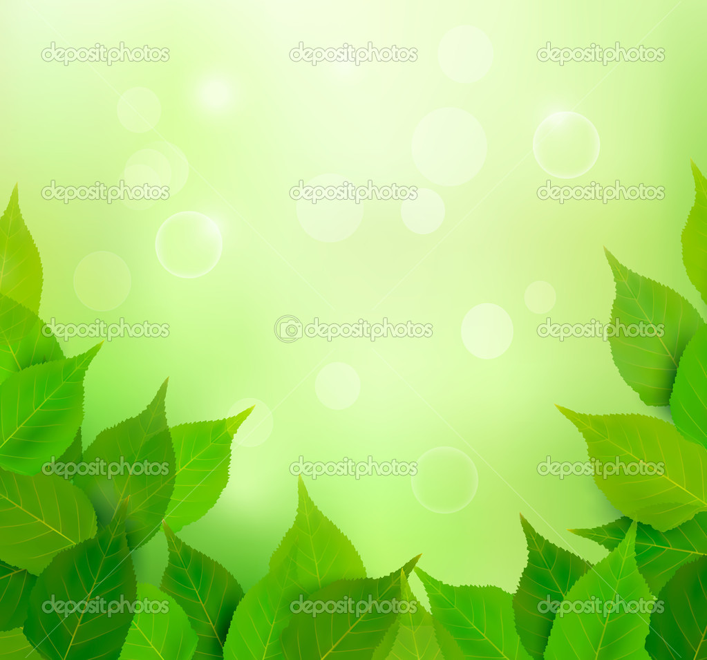 Nature background with fresh green leaves Vector illustration